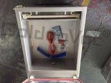 Máquina del embalador del vacío, sola empaquetadora del vacío del compartimiento, sellador del alimento del vacío