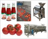 Goma de tomate fría de la rotura 30-32% producido en Xinjiang, alto licopeno y buen color