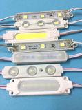 Un modulo dei 3 LED per la pubblicità del segno