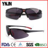 China Factory Haute qualité général Sunglass de sécurité (YJ-J301)