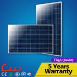 Konkurrenzfähiges straßenlaternedes Preis-100W Polyim freien LED Solardes panel-60W 8m