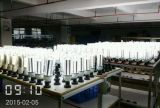Ampoule 2017 approuvée du maïs DEL de la CE SMD E40 80W100W120W d'UL Dlc pour l'éclairage de hall d'exposition, lumière de maïs de 100W DEL, ampoule de maïs de DEL