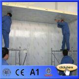 El panel de emparedado de la alta calidad EPS/PU