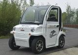 Автомобиль электрического миниого автомобиля Fs-1 60V 100A милый