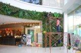 2017 nuevo diseño decorativa de la pared de cortina de plantas