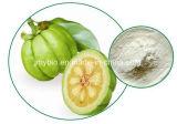自然な減量のHydroxycitricの酸60%のGarciniaのCambogiaのエキス100%
