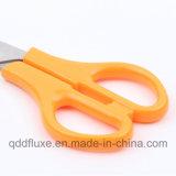 China-Lieferanten-Papierausschnitt-Geschenk-Briefpapier-Schule-Kursteilnehmer-Scheren