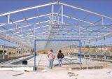 Estructuras de acero prefabricadas industriales de acero del diseño del taller/del Carport de los proyectos de edificio de la construcción