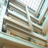 Panneau en aluminium de mur rideau de plafond de tuile de plafond décoratif spécial en métal pour la décoration avec la qualité ISO9001 ignifuge