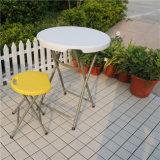 El patio de interior y al aire libre del uso embaldosa el suelo de DIY por estándar europeo