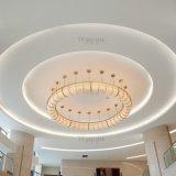 Panneau de plafond en aluminium avec le modèle personnalisé pour la décoration intérieure