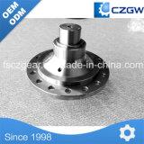Шестерня глиста точности латунные и колесо глиста нержавеющей стали