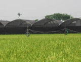 양식과 플랜트를 위한 농업 그늘 피복