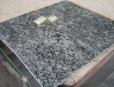 Pietra tombale bianca del granito dello spruzzo per il servizio della Slovacchia
