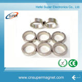 Magneti di anello poco costosi all'ingrosso del neodimio