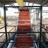 Chaîne de production de jus de tomates de machine de Macking de sauce tomate