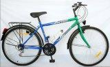 Китай реального завода с легких велосипед MTB (FP-MTB-P017)