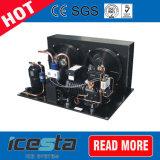 Kühlraum mit Bitzer und Emerson-Copeland Luft-Kondensator-Gerät