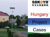 Le CE a approuvé les réverbères solaires de 36W LED avec le cas de 6m Polonais-Hongrie