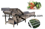 다기능 식물성 과일 세척 세탁기 청소 가공 기계 (WSQP)
