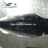100% замороженные продукты акула синего цвета кожи