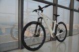 Город велосипедов для матери E горных велосипедов легкий вес Elecric велосипед