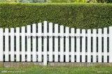 Le WPC Co-Extruded ASA de haute qualité d'escrime, décoration de jardin