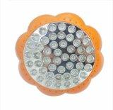 E27 le vendite calde 48W LED si sviluppano chiare con lo spettro completo per le piante d'appartamento