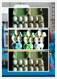 خداع حارّة [إكنورميكل] آليّة بيضة صينيّة آلة