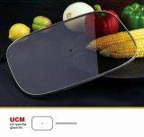 De vierkante Dekking van het Vlakke Glas voor Commercieel Langzaam Kooktoestel