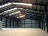 Gruppo di lavoro chiaro della struttura d'acciaio del magazzino della struttura d'acciaio (SL-0040)