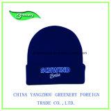 薄い灰色の刺繍の冬の帽子のニットの帽子