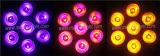 7*15W Rgbaw+UV 6 in 1 indicatore luminoso impermeabile di PARITÀ del LED