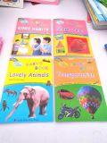 Colores de alta calidad en China impresión de libros baratos