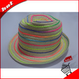 다채로운 서류상 밀짚 중절모 모자