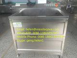 청과 Ozone Ultrasonic Washer