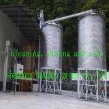 macchina di macinazione di farina di 30tpd 50tpd 100tpd