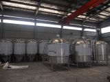 vollständig eingestellter Brauerei-Gerätbrew-Installationssatz des Edelstahl-300L Nano