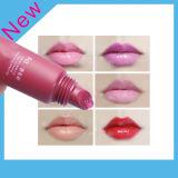 형식 입술 광택 젤 2015년