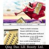 Lili Beauty Volume Eyelash 8mm de 12mm Individuele Valse Uitrusting van het Dienblad van het Etiket van de Uitbreiding van de Zweep van het Oog van de Cluster Privé