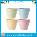 실내 Outdoor Wall/Hanging/Corner/Balcony Herb/Seed Ceramic/Terracotta Modern/Decorative/Concrete Large/Small 정원 Planter Pot