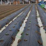 Сельского хозяйства черного цвета РР нетканого материала с сорняками пейзаж ткань