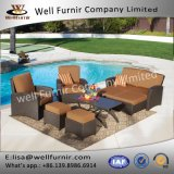 Gruppo profondo buono della disposizione dei posti a sedere di Furnir Wf-17090 6PC