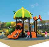 Campo de jogos ao ar livre do projeto novo (TY-01701)