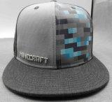 習慣の調節可能な文字方法5パネルのヒップホップの帽子(ACEW077)