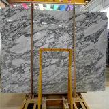 Het Witte Marmer van Corchia van Arabescato met het Grijze Marmeren Blok van de Korrel