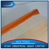De auto Filter van de Lucht voor Doorwaadbare plaats/Fabrikant 30757155 van Volvo China