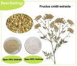 Extrair Osthole Cnidium Monnieri 98%HPLC