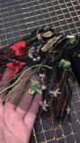 肩の花の刺繍の黒クラブ包帯の服を離れて