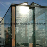 Curtain Wall (Glass Curtain Wall, Glass Facade, Construction Glass)